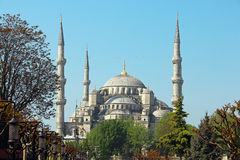 Moschea di Ahmed del sultano (la moschea blu), Costantinopoli Fotografia Stock