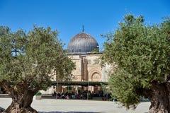 Moschea di Al-Aqsa Immagine Stock