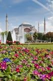 Moschea di Hagia Sofia a Costantinopoli Fotografia Stock