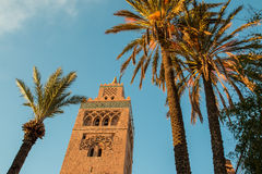 Moschea di Koutoubia e palme a Marrakesh alla sera Immagini Stock Libere da Diritti