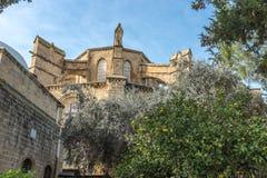 Moschea di Selimiye, Nicosia, Cipro del nord Fotografia Stock