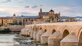 Moschee Cordobas Spanien stock video