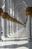 Moschee Dhabi-Zayed Lizenzfreies Stockfoto