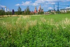 Moscou Kremlin sur un fond des champs et des bouleaux verts Photos libres de droits