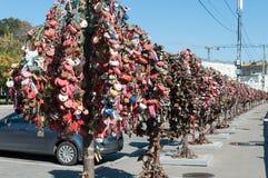 MOSCOU, RÚSSIA - 21 09 2015 Árvores com os fechamentos de Imagens de Stock Royalty Free