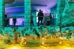 Moscou, Rússia - 10 de dezembro 2016 Oceanarium interior da cidade do açafrão em Krasnogorsk Imagens de Stock