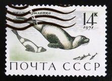 MOSCOU, RÚSSIA - 15 DE JULHO DE 2017: Um selo impresso em URSS (Rússia) Fotografia de Stock Royalty Free