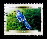 MOSCOU, RÚSSIA - 24 DE NOVEMBRO DE 2017: Um selo impresso em Canadá sh Fotografia de Stock Royalty Free