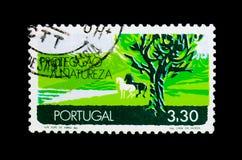 MOSCOU, RÚSSIA - 24 DE NOVEMBRO DE 2017: Um selo impresso em Portugal Fotos de Stock Royalty Free
