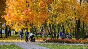 Moscou, Rússia - 3 de outubro 2019 as pessoas caminham com crianças em um lindo parque urbano de outono video estoque