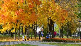 Moscou, Rússia - 3 de outubro 2019 as pessoas caminham com crianças em um lindo parque urbano de outono filme