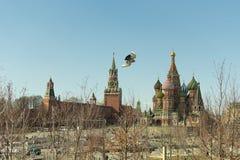 Moscou/Rússia - 04 2019: vista do Kremlin e da catedral da manjericão do St com uma pomba de voo no quadro fotos de stock