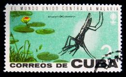 MOSCOU, RUSSIE - 15 JUILLET 2017 : Timbre rare imprimé dans des expositions du Cuba Image libre de droits