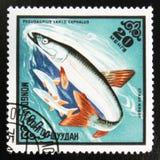 MOSCOU, RUSSIE - 15 JUILLET 2017 : Un timbre imprimé au Cuba montre la picoseconde Photo stock