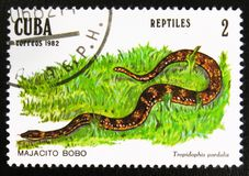 MOSCOU, RUSSIE - 15 JUILLET 2017 : Un timbre imprimé au Cuba montre le Sn Images libres de droits