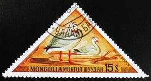 MOSCOU, RUSSIE - 15 JUILLET 2017 : Un timbre imprimé dans l'exposition de la Mongolie Photos libres de droits