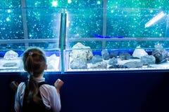 MOSCOU, RUSSIE - 4 novembre 2016 : petite fille regardant l'objet exposé Photo stock