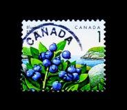 MOSCOU, RUSSIE - 24 NOVEMBRE 2017 : Un timbre imprimé dans le Canada SH Photographie stock