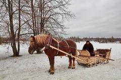 Moscou - 10 04 2017: Um homem em um transporte com cavalo alaranjado, Mosc Fotos de Stock Royalty Free