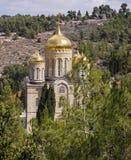 Moscovia monaster Fotografia Royalty Free