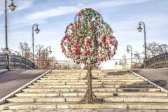 moscow Дерево медового месяца Стоковые Изображения RF