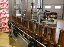 moscow Россия 7-ое февраля 2018: Пустые пивные бутылки, на конвейерной ленте, Binding винзавод Стоковая Фотография RF