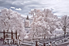 Moscow. Alexander Garden and Kremlin. Infrared photo Stock Images