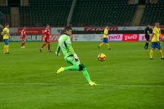 Goalkeeper Sergey Pesyakov 30 on the soccer game