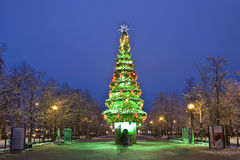 Moscow, Christmas tree Royalty Free Stock Photos