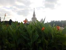 Moscow city view, Russia. Moscow city view russia cityscape urban royalty free stock image