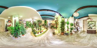 Moscow-2018: 3D spherical panorama with 360 degree viewing angle of the flower shop interior with green plants. Ready for virtual stock photos