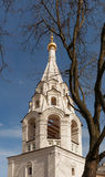 Moscow. Donskoy Monastery. Donskoi Monastery Stock Image