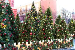 Moscow Festival Journey to Christmas . Illuminated New Year trees on Manezhnaya Square in front of Historical Museum.  Royalty Free Stock Photo