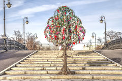 Moscow. Honeymoon Tree Royalty Free Stock Images