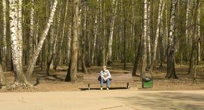 Moscow, Izmaylovskiy park Stock Photography