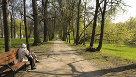 Moscow, Izmaylovskiy park. MOSCOW - APRIL 29, 2014: people resting in Izmaylovskiy park in summer. The biggest park of Europe with territory 1500 hectare exist Royalty Free Stock Image