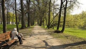 Moscow, Izmaylovskiy park Royalty Free Stock Image