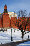 Moscow Kremlin and Alexanders garden in winter. Color photo. Stock Image