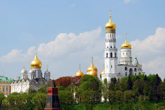 Moscow Kremlin landmarks surrounded by green grees. Royalty Free Stock Photo
