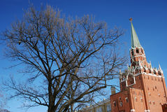 Moscow Kremlin tower and tree. Royalty Free Stock Photography