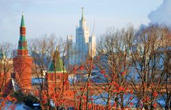 Moscow Kremlin. Trees covered by red berries. Stock Image