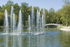 Moscow, Lianozovskiy park Stock Image