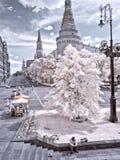moscow Manezhnaya Kremlin i kwadrat terenu miasta ulicy Moscow fotografii ulicy Obraz Royalty Free