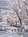 Moscow. Manezhnaya Square  and Alexander Garden. Infrared photo Stock Photo