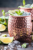Moscow mule cocktail. In copper cup with lime, ginger beer, vodka and mint garnish Stock Images