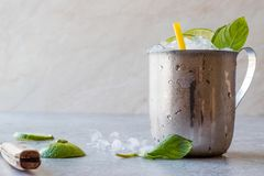 Moscow Mule Cocktail with Lime, Mint Leaves and Crushed Ice in Metal Cup. Summer Beverage stock images