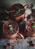 Moscow Mule cocktails garnished with cranberries and lime royalty free stock photos