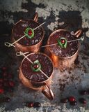 Moscow Mule cocktails garnished with cranberries and lime stock photo