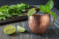 Moscow Mule 1 Royalty Free Stock Photos