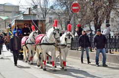 Moscow, Russia, April, 15, 2017. Parade of trams in 2017 year on Chistoprudny Boulevard. Horses harnessed in the competition Stock Image